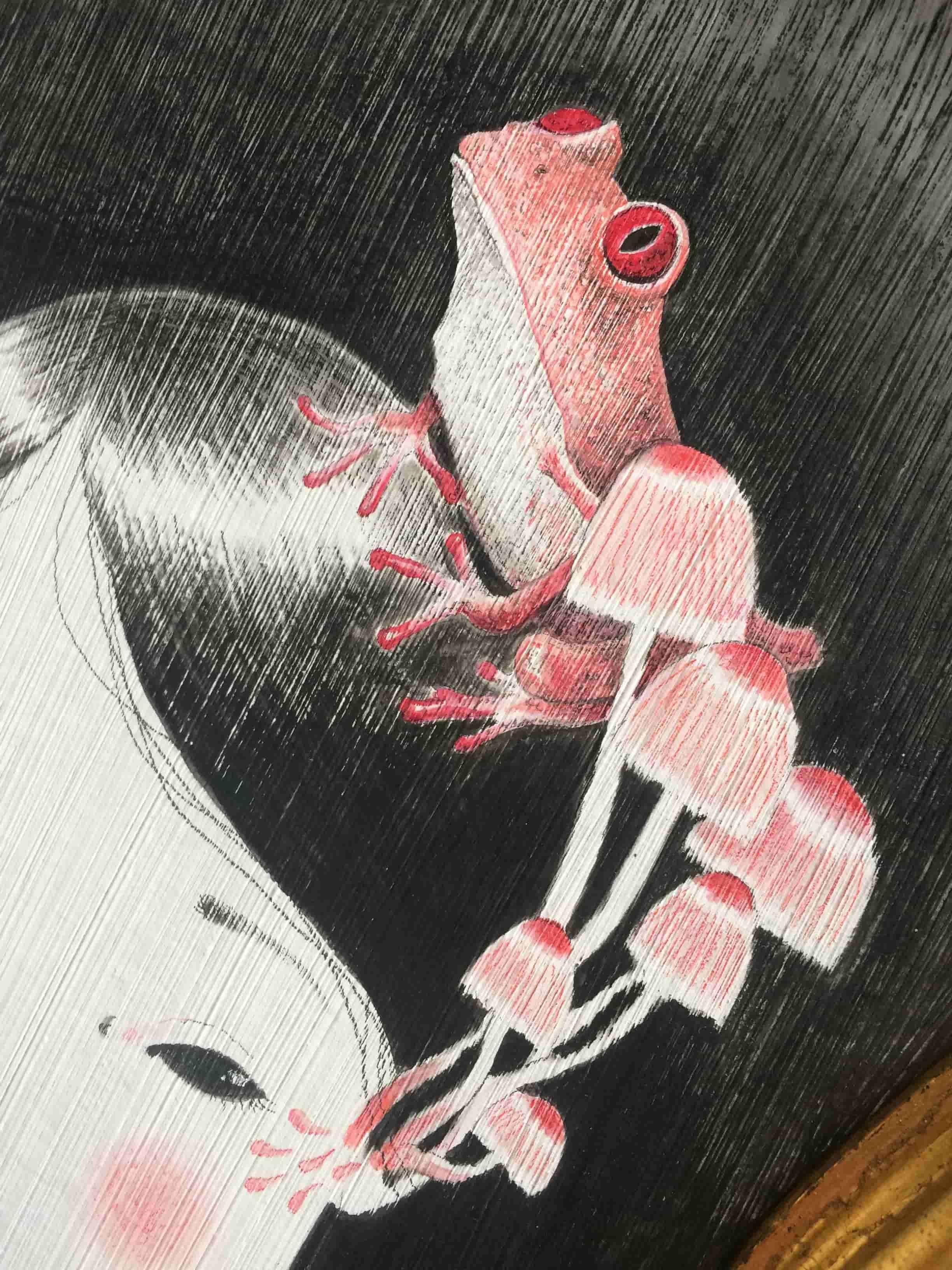 seforapons-acrylics-graphite-colouredpencils-symbiosis-pink-frog-mushroom-kaeruchan-3