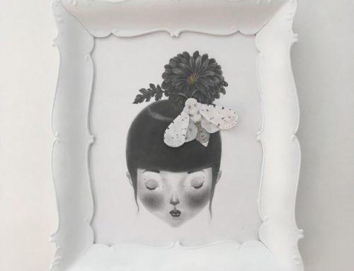 Falena bianca